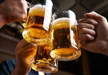 Bira beyin gelişimi